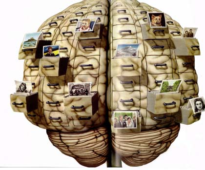 Supplements for brain concentration picture 2