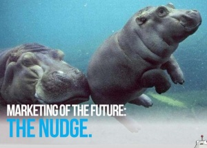 The-Nudge