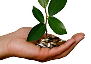 sustainability-and-profit