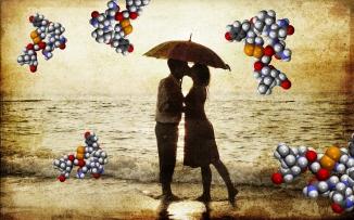 love-oxytocin